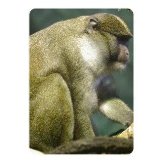 """Suave-Mirada del mono del pantano de Allen Invitación 5"""" X 7"""""""