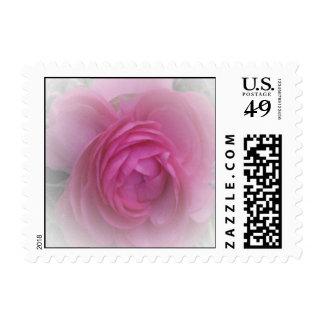Suavemente rosa sellos