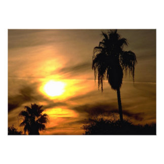 Sub-tropical sunset invitations