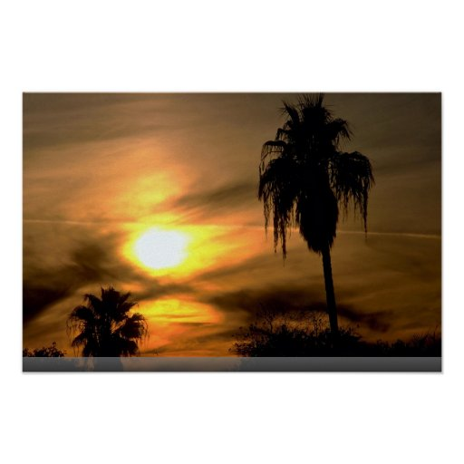 Sub-tropical sunset poster
