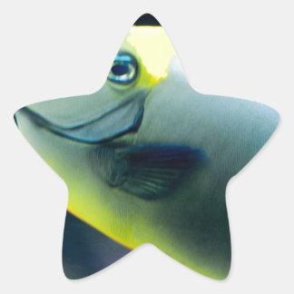 Subacuático Pegatina En Forma De Estrella