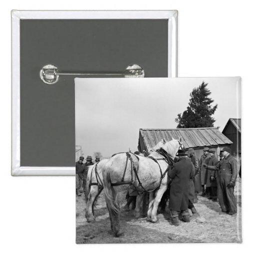 Subasta del caballo de proyecto, los años 30 pin
