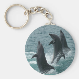 Subic Bay Dolphins Keychain