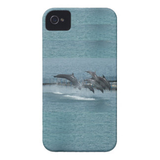 Subic Dolphins Blackberry Case