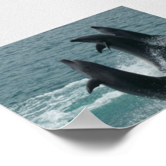 Subic Dolphins Posterprint Poster