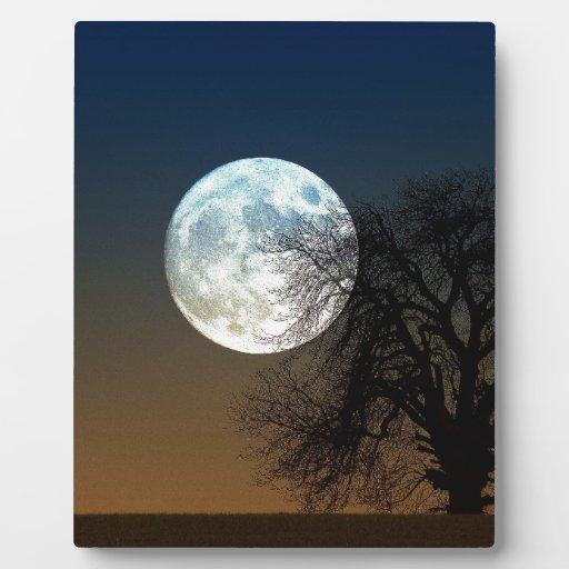 Subida de la luna placa de madera