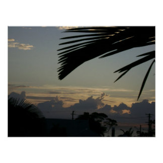 Subida de Sun de la impresión de las zonas tropica Póster