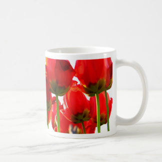 Subida roja taza básica blanca