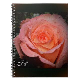 Subió del cuaderno de la alegría