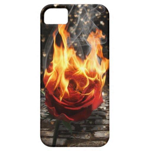Subió en el fuego, color de rosa ardiente iPhone 5 carcasas