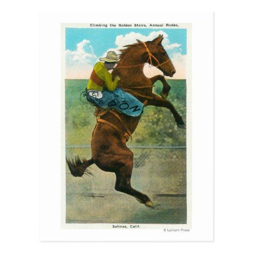 Subir las escaleras de oro en el rodeo anual postal