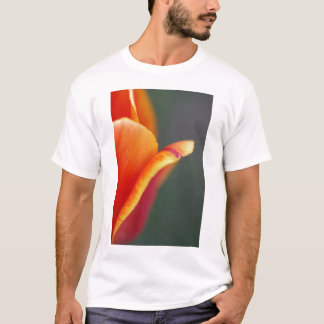 subject color T-Shirt