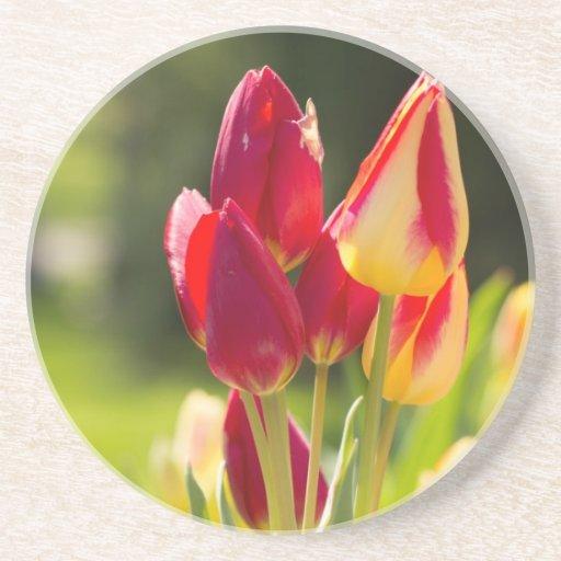 Sublevación del tulipán posavasos para bebidas