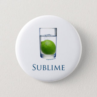 Sublime funny pinback button