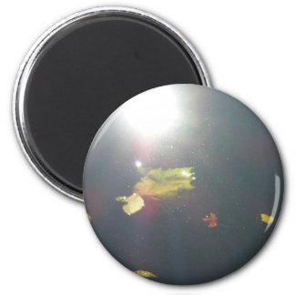 Submerged Leaf 2 Inch Round Magnet