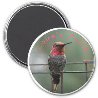 Subtítulo del punto del amor del imán del colibrí