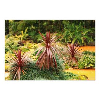 Subtropical vegetation photo art