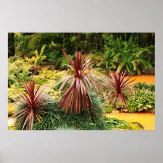 Subtropical vegetation poster