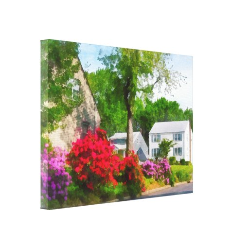 Suburban Azalea Garden Canvas Print