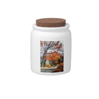Suburban Street in Autumn Candy Jars