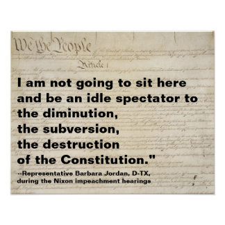 Subversion and Destruction of Constitution Protest Poster