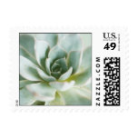 succ5 postage stamps