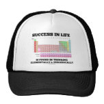 Success In Life Is Found In Thinking Elementally Mesh Hats