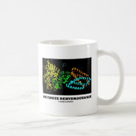 Succinate Dehydrogenase (Chemistry) Mugs
