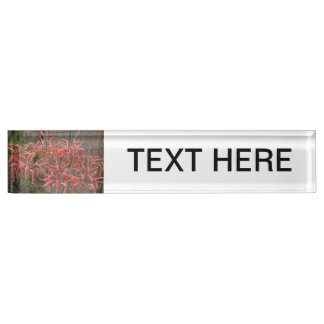 succulent aloe flowers pink neat flower photo name plate
