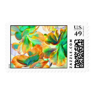 succulent amarillo y verde colorized envio