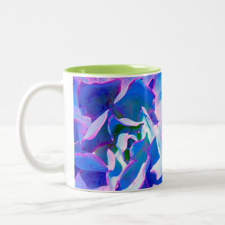 Succulent azul tazas de café