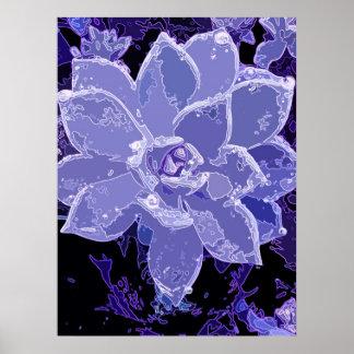 Succulent Blue Poster