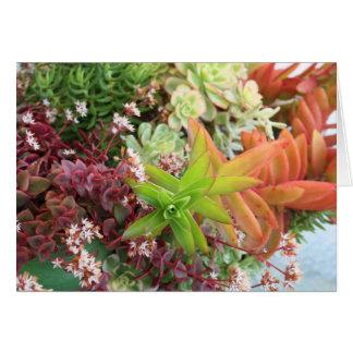 Succulent bouquet card