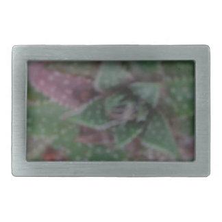 Succulent brumoso, púrpura verde, naturaleza, hebilla de cinturón rectangular