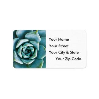 Succulent Closeup Address Label