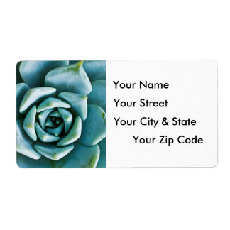 Succulent Closeup Personalized Shipping Label