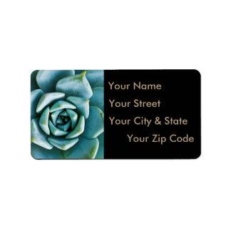 Succulent Closeup Label