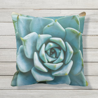 Succulent Closeup Outdoor Pillow