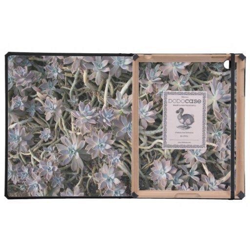 Succulent Clusters iPad Folio Cases
