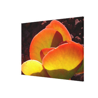 Succulent de la planta de la paleta del Amy Vangsg Impresión En Lona