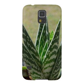 """Succulent de Variegata del """"cocodrilo"""" del áloe Carcasa Para Galaxy S5"""