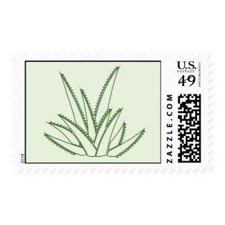 Succulent del cactus del áloe del agavo sellos postales