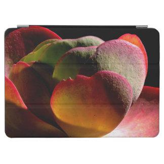 Succulent Desert Plant iPad Air Cover