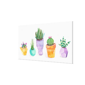 Succulent Display Canvas Print
