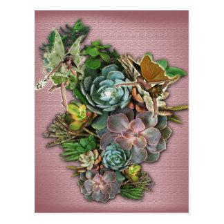 Succulent display on a postcard