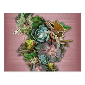 Succulent displays postcard