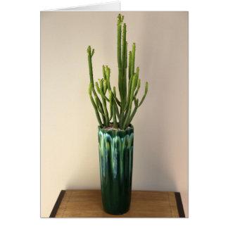 Succulent en envase por la planta perfecta tarjeta pequeña