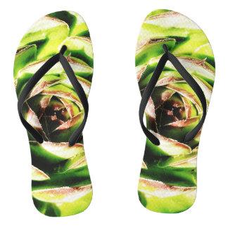 Succulent Flip Flops