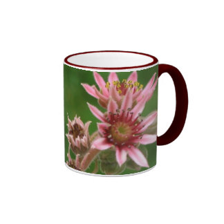 Succulent Flowers Mug
