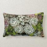 Succulent Garden 1 Pillow